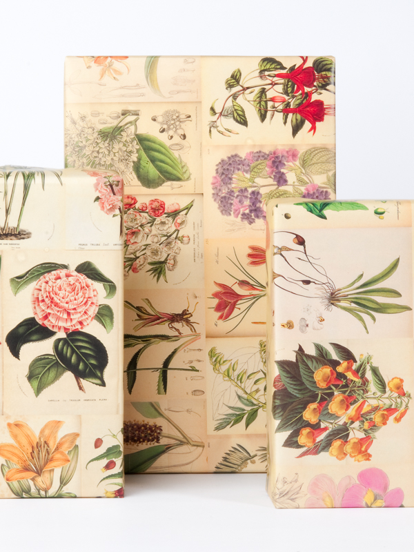 Botanical Wrapping Paper