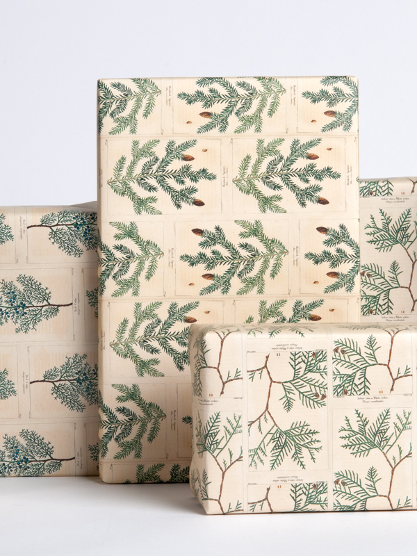 Fir Tree Gift Wrap