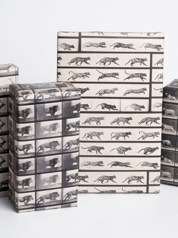 Animal Locomotion Study Wrapping Paper