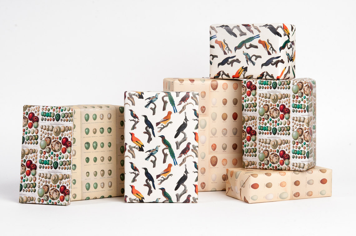 Bird & Egg Wrapping Paper